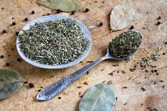 Mezcla de especias verdes Imagen de archivo