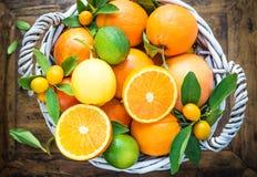 Mezcla de frutas cítricas Foto de archivo libre de regalías