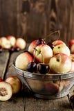 Mezcla de frutas frescas Fotografía de archivo libre de regalías