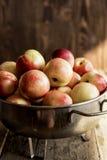 Mezcla de frutas frescas Imagenes de archivo