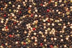 Mezcla de granos de pimienta Fotos de archivo