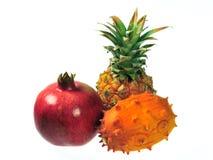 Mezcla de la fruta Fotos de archivo libres de regalías