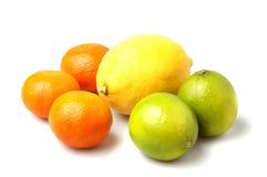 Mezcla de la fruta cítrica imagen de archivo