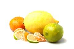 Mezcla de la fruta cítrica foto de archivo libre de regalías