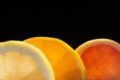 Mezcla de la fruta cítrica Fotos de archivo libres de regalías