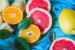 Mezcla de la fruta cítrica en fondo azul Variedad de agrios Fotografía de archivo libre de regalías