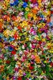 Mezcla de las flores Imagenes de archivo