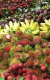 Mezcla de las frutas Fotos de archivo