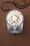 Mezcla de los pescados en un mezclador Fotografía de archivo libre de regalías
