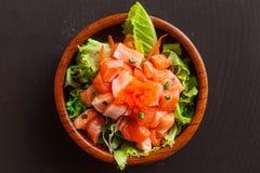 Mezcla de los salmones y de la verdura Fotos de archivo