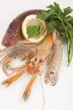 Mezcla de pescados frescos Imágenes de archivo libres de regalías