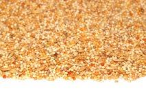 Mezcla de semillas para los pequeños loros fotografía de archivo