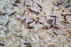 Mezcla del arroz Foto de archivo libre de regalías