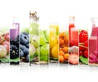 Mezcla del jugo de fruta Fotografía de archivo