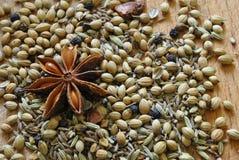 Mezcla del masala de Garam Imagen de archivo libre de regalías