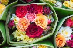 Mezcla elegante de la mezcla de Rose de bastidor horizontal del diseño de las flores La hortensia verde, salvaje subió, camelia,  Imagenes de archivo