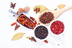 Mezcla herbaria exótica del concepto de la comida del cardamomo orgánico po de las especias Imagen de archivo libre de regalías