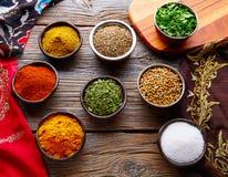 Mezcla india de las especias de la cocina como curry del coriandro Imagenes de archivo