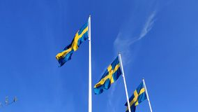 Mezcla que agita de la bandera sueca a c?mara lenta debajo del cielo azul en astas de bandera durante el d?a nacional metrajes