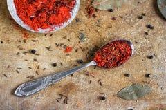 Mezcla roja de la especia Foto de archivo libre de regalías