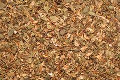 Mezcla seca herbaria del té Imagen de archivo libre de regalías