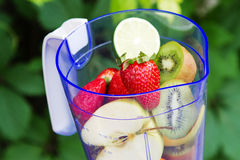 Mezclador eléctrico con las frutas en él Fotos de archivo libres de regalías