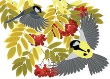 Mezenvlieg onder de takken royalty-vrije illustratie