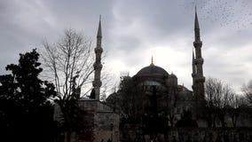 Mezquita azul en Estambul almacen de metraje de vídeo