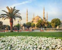 Mezquita azul, Estambul, Turquía fotografía de archivo libre de regalías