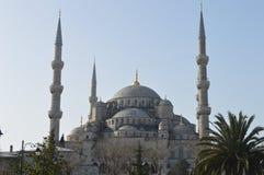 Mezquita azul, opinión del resorte Imagenes de archivo