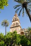 Mezquita Belltower, Cordova Immagine Stock
