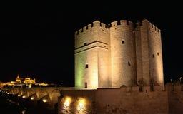 Mezquita Cathedral of Cordoba at night Stock Photos