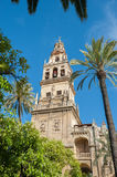 Mezquita cathedral, Cordoba, Spain Stock Photography
