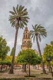 Mezquita-Cathedral Minaret, Cordoba III Stock Photography
