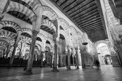 Mezquita, Cordoba. The interior of Mezquita in Cordoba, Spain Royalty Free Stock Photos