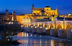 Mezquita de Córdoba y del puente romano en noche Fotografía de archivo