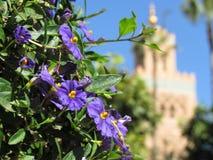 Mezquita de Koutoubia y su alminar hermoso en Marrakesh Marruecos foto de archivo