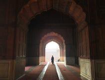 Mezquita del Jama Masjid, Delhi vieja, la India Foto de archivo libre de regalías