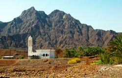 Mezquita el desierto de Dubai imágenes de archivo libres de regalías