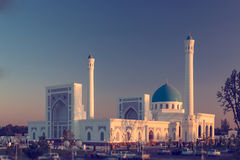 Mezquita en la puesta del sol Foto de archivo libre de regalías