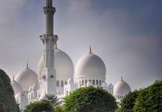 Mezquita magnífica de Abu Dhabi Fotografía de archivo