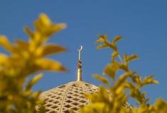 Mezquita magnífica - Muscat - Omán Imagen de archivo libre de regalías