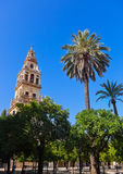 Mezquita Mosque Cathedral tower - Cordoba Spain Royalty Free Stock Photo