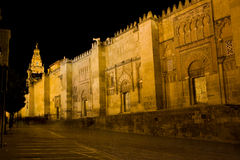 Mezquita at Night Royalty Free Stock Image