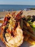 Mezza aragosta sulla spiaggia Immagini Stock