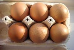 Mezza dozzina delle uova in una casella Fotografia Stock Libera da Diritti