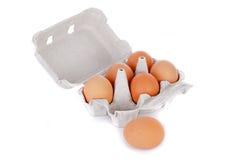 Mezza dozzine uova marroni del pollo in casella isolata Immagine Stock Libera da Diritti