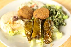 Mezza and Falafel plate. With hummus, baba ganoush(egg plant spread), tabouli salad, and dolmas(stuffed grape leaves Royalty Free Stock Photo