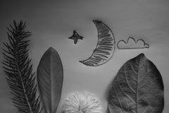 Mezzaluna della luna del paesaggio di notte e foto creativa della foresta fotografia stock