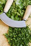 Mezzaluna and herbs Royalty Free Stock Photos